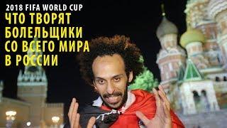 Что творят болельщики! FIFA World Cup in Russia 2018