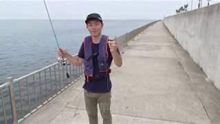 愛知常滑りんくう釣り護岸でちょい投げ釣り
