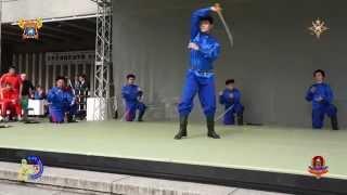 ПВ Перначъ на сцене возле дворца Будокан 4 10 2014 г