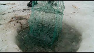 Закон тюменской области о рыбалке