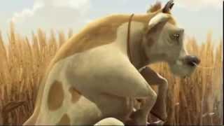 。◕‿◕。 Funny Animal animation - funny video 2013 2014  HD