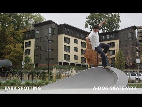 Park Spotting: A Dog Park, Vermont | TransWorld SKATEboarding