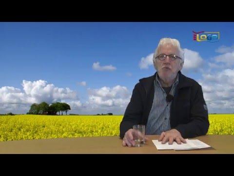 Vluchtelingen in het Oldambt - RTV GO! Omroep Gemeente Oldambt