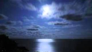 The Moonlight Let Me Down by Mink DeVille