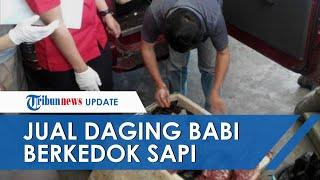 Penjualan Daging Babi Hutan Berkedok Daging Sapi di Lampung Terbongkar, Curiga dengan Harga Murah