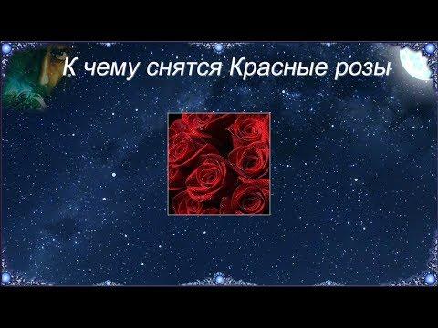К чему снятся Красные розы (Сонник)