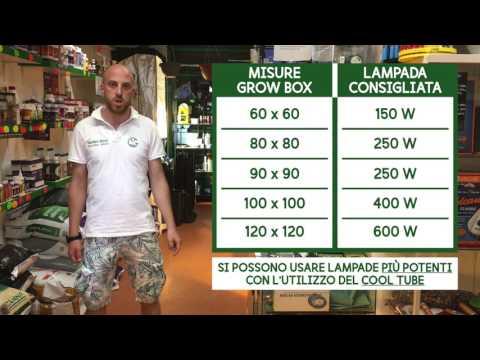 Lampade HPS/MH - Guida alla Coltivazione Indoor Garden West GrowShop Milano
