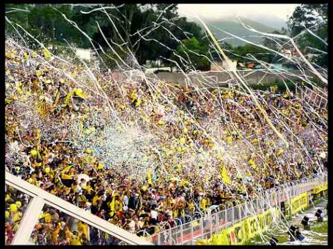"""Canticos Avalancha Sur 4"" Barra: Avalancha Sur • Club: Deportivo Táchira • País: Venezuela"