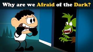 Why are we Afraid of the Dark? | #aumsum #kids #science #education #children