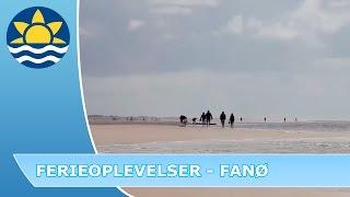 rabat til sommerland sjælland webcam blokhus