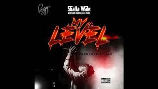 Shatta Wale   My Level (Audio Slide)
