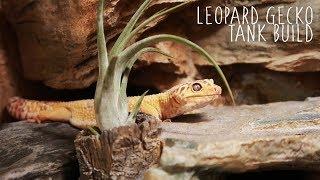 Building A Naturalistic Leopard Gecko Tank!!