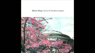Echo & The Bunnymen Never Stop extended cover