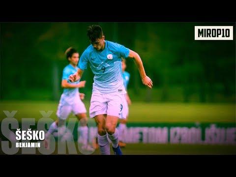 BENJAMIN ŠEŠKO ✭RB Salzburg ✭ THE PERFECT STRIKER ✭ Skills & Goals ✭ 2020 ✭