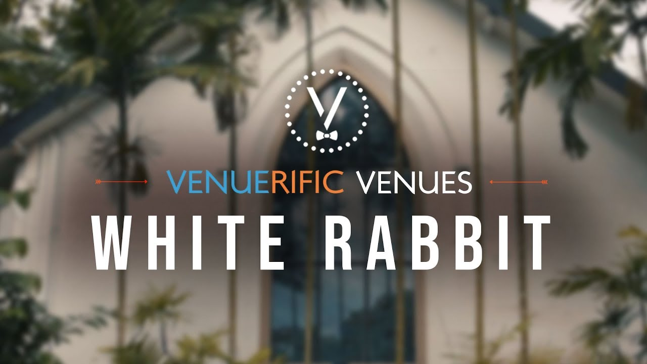 The White Rabbit video preview