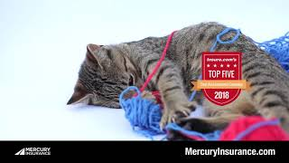 Mercury Factz and Catz