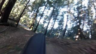 Sierra Morena Trail downhill