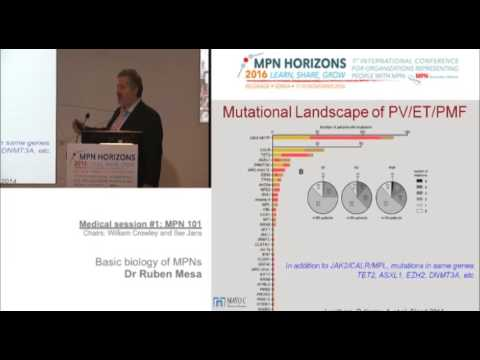 Medical session #1: MPN 101Basic Biology of MPNs