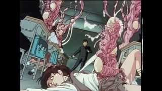 Dark Cat Full Movie  Anime