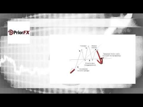 Обучение форекс с нуля для начинающих