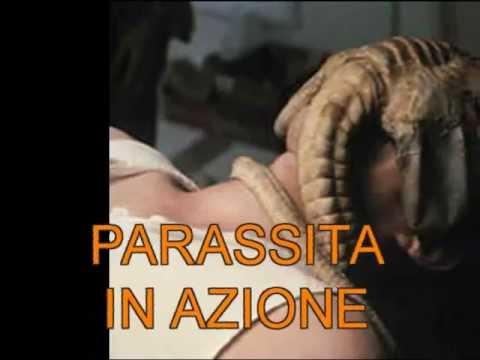Incatrami come guarire parassiti