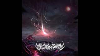 Infecting The Swarm - Abyss (Full Album)