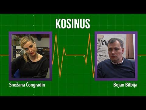 Kosinus: Jedini kompromis je priznanje kosovske nezavisnosti