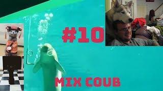 MIX COUB #10   Best Cube   Funny Moment    ЛУЧШИЕ ПРИКОЛЫ