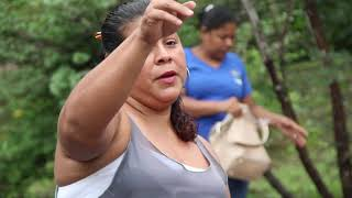 Directrices para sostenibilidad de pesca en pequeña escala en Costa Rica