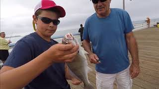How to Fish From a Pier