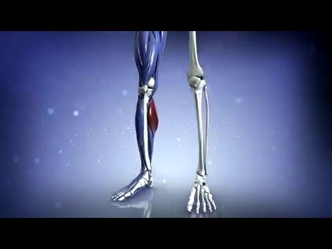 Der Schmerz im Hals den Schultergelenk von den Händen