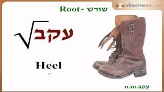 "Does Jacob mean  ""deceiver"" ?  | Biblical Hebrew Q&A with eTeacherBiblical.com"
