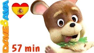 🐕 Сanciones Infantiles | La Canción De Bingo   Colección | Videos Infantiles De Dave Y Ava 🐕