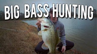 Big Bass Hunting (9+ pound Bass!)