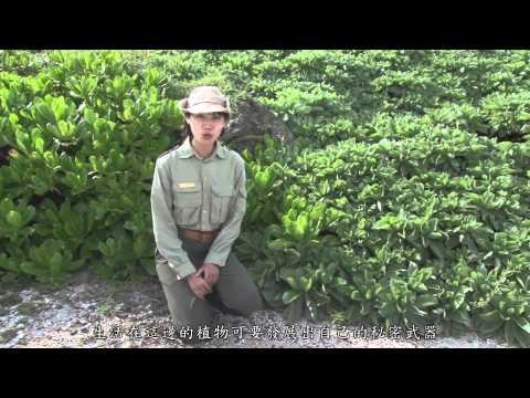 [行動解說員]墾丁國家自然公園-龍坑生態保護區