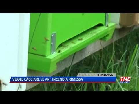 TG (04/10/2019) - VUOLE CACCIARE LE API, INCENDIA RIMESSA