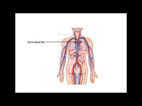 Koupit hypertonického roztoku hydroxidu sodného