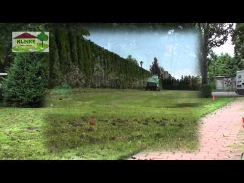 Aerifizieren der Rasenfläche im Garten