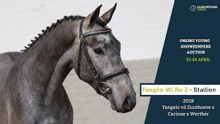 Tangilo Wi Ro Z - under the saddle