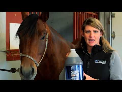 Sore No-More Performance Liniment (16 oz) Video
