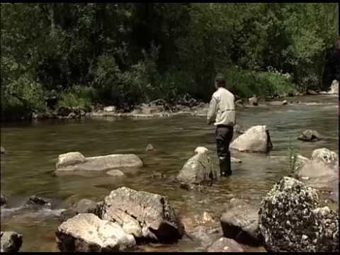 Los gallos de León y la pesca en el Curueño.