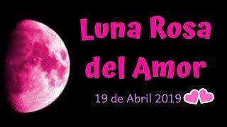 🌕🌹No dejes pasar la Luna Rosa del 19 de abril y encuentra el amor 💖🌈