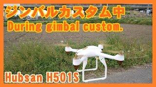 Hubsan H501s 2軸ジンバルカスタム中【桜と鳥とドローン】