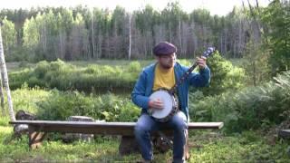 Colours by Donovan on banjo
