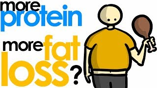 MORE vs LESS PROTEIN For Fat Loss