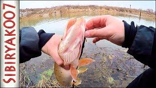 Рыбалка ультралайт что это такое