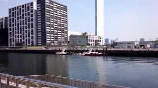 豊海運動公園 デイキャンプ場のイメージ