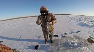 Зимняя рыбалка в Астрахани на судака 20180128