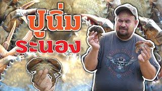 Soft shell crab - Ranong Thailand