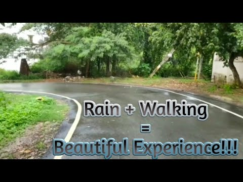Evening Walk in the Rain | Rain Sounds | Nature Sounds | Rain + Walking = Beautiful Experience